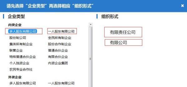 公司核名网上申报组织形式怎么填写